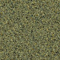 Линолеум Tarkett Prisma Picadilly 3