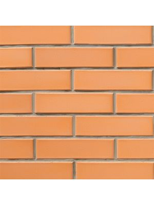 Кирпич СБК-Ромны Желтый Персиковый (Ж1) Полуторный (250х120х88мм)