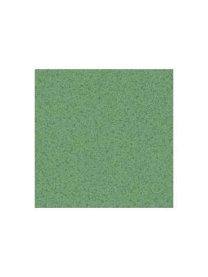 Лінолеум Tarkett Prisma Stella 12
