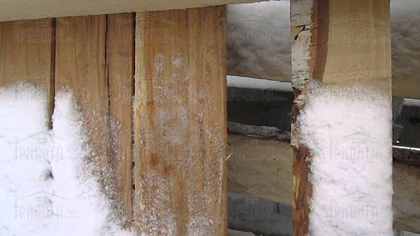 Фото 4. Как обеспечить древесине огнебиозащиту при минусовых температурах