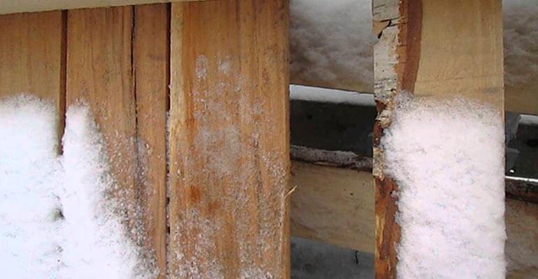 Фото 4. Як забезпечити деревині огнебіозахист при мінусових температурах